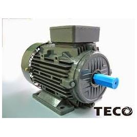 Cung cấp giá động cơ teco Đài Loan,máy bơm nước teco pccc